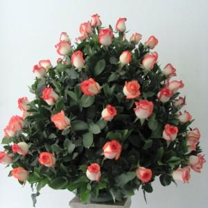 centro-rosas RO-13