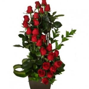 espiral-rosas RO-03