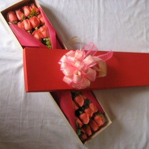 rosas-cajacolores C-06