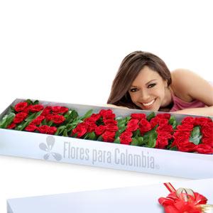 rosas-te-amo C-08